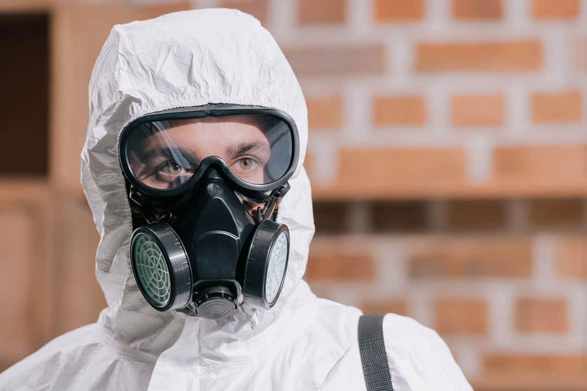 Asbestos, Lead & Mold